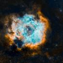 The Rosette Nebula,                                Mostafa Metwally