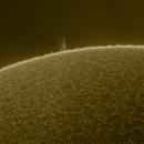 Sun 4_16_20,                                Alan