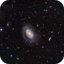 NGC4725,                                Bill Clugston
