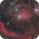 Wide field view of region between Orion's belt and sword!,                                Mohammad Nouroozi