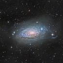 The Sunflower Galaxy (M63),                                KuriousGeorge