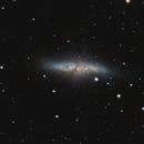 M82 + SN2014J,                                Marco Bocchini