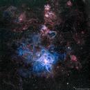 NGC2070 - Tarantula Nebula in HaSO,                                Richard Bratt