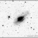 NGC3521 - Bubble Galaxy in Leo,                                starhopper62