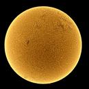 February Sun,                                Onur Atilgan