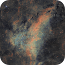 IC1318A in H-SOO,                                Prath Pavaskar