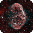 Crescent Nebula - 8 hour integration,                                Alex Pinkin