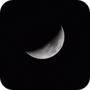 Moon,                                Lawlcat