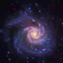 M101, Pinwheel Galaxy,                                Firas Haki