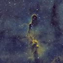 The Elephant's Trunk Nebula in Cepheus in SHO,                                CrestwoodSky