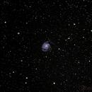 M101 Pinwheel Galaxy (using SV66ED),                                Gilbert Ikezaki
