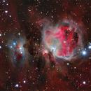 Orion nebula,                                Leandro Fornaziero