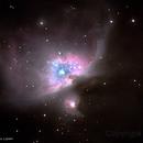 Orion Nebula,                                Luiz Junior