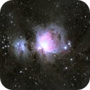 Widefield Orion Complex ,                                Terry