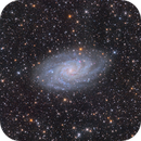 Triangulum Galaxy,                                Steed Yu