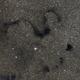 Barnard 72 - Snake Nebula (DSS v1),                                Martin Junius