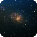 The Triangulum Galaxy M33,                                MikeConway