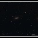 NGC2903,                                Dan Dabson