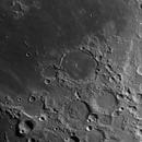 Pitatus. May 2nd 2020,                                Wouter D'hoye