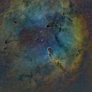 IC1396 SHO,                                shn13