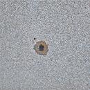 Sun AR12526,                                Stephan Reinhold