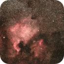 North America Nebula - NGC 7000,                                tpuerzer