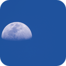 Daylight Moon,                                David
