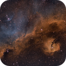 Seagull Nebula - QHY600 - Esprit 150 - SHO,                                Eric Walden