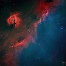 Soaring Seagull (IC2177, Sh2-292),                                Gary Lopez