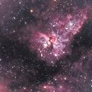 NGC 3372 Eta Carina,                                Silkanni Forrer