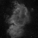 IC1848,                                Versocquette