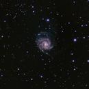 M101 - Pinwheel Galaxy,                                Jeff Kisslinger