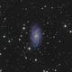 NGC 2336,                                Frank Colosimo