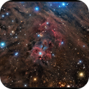 NGC 1999,                                sky-watcher (johny)