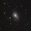 NGC772,                                Danny Flippo