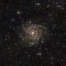 IC 342,                                leeasle