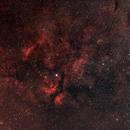 Sadr region in Cygnus,                                framoro