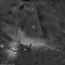 Horsehead nebula (B33) and flame nebula (NGC2024) Ha widefield.,                                lukfer