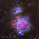The Great Orion Nebula & Running Man Nebula,                                David McGarvey