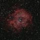 C49 Rosette Nebula,                                astromiao