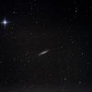 M98 (Galaxie) - Chevelure de Bérénice,                                Patrick ROGER