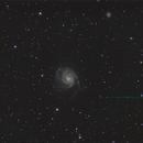 M101,                                Simone Carchedi
