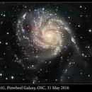 M101, Pinwheel Galaxy, OSC, 31 May 2016,                                David Dearden