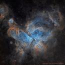 NGC 3372 Eta Carinae,                                Paddy Gilliland