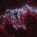 The Bat Nebula,                                Jari Saukkonen