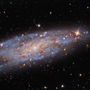NGC 247,                                Warren A. Keller