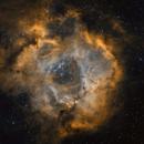 NGC 2264 v. 2020,                                oboeins