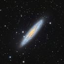 Sculptor Galaxy NGC 253,                                Juan Lozano