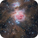 The Great Orion Nebula and Molecular Cloud,                                AstroPhotoRoss