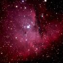 NGC 281,                                Massimo Magrini